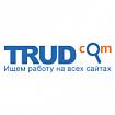 Спрос и зарплаты SEO-специалистов в Рф   Статьи SEOnews